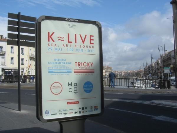K-LIVE 2013 en vidéo !!!